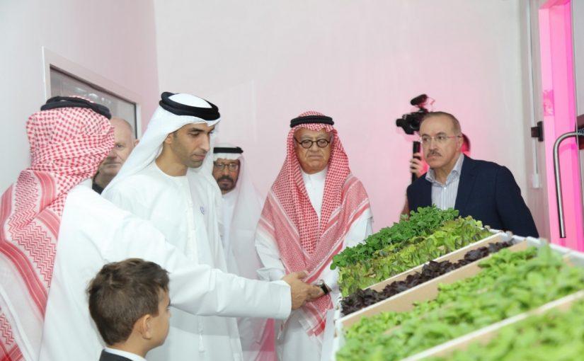 الزراعة في دولة الإمارات