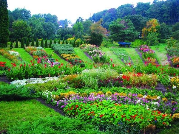 الحديقة النباتية المركزية
