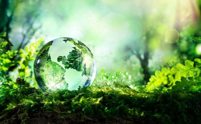 موضوع تعبير عن البيئة