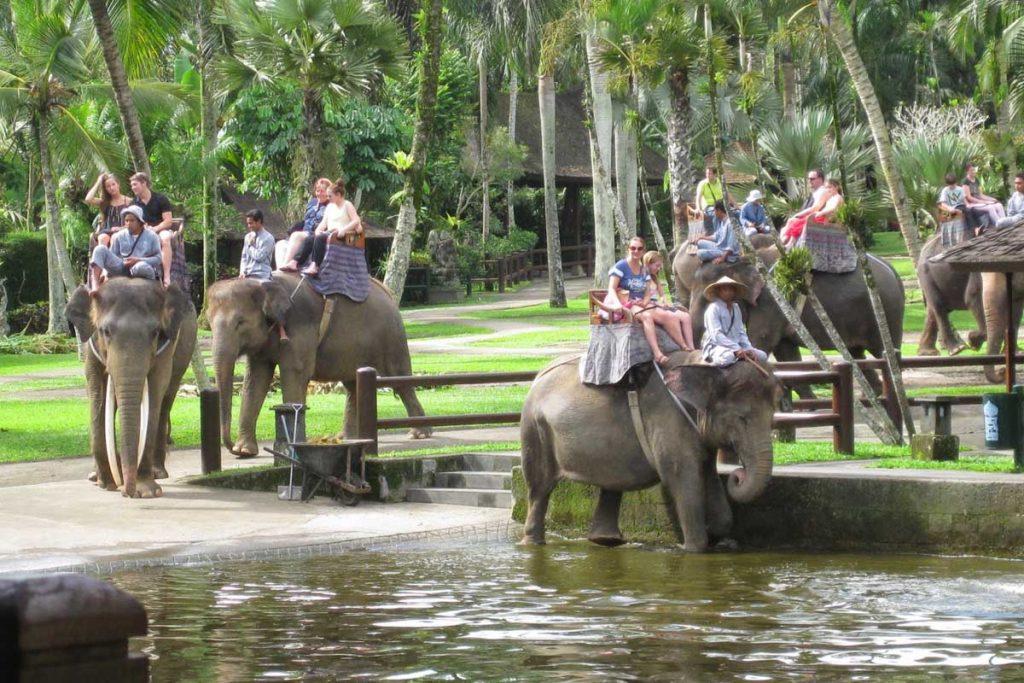 حديقة سفاري ناموانج