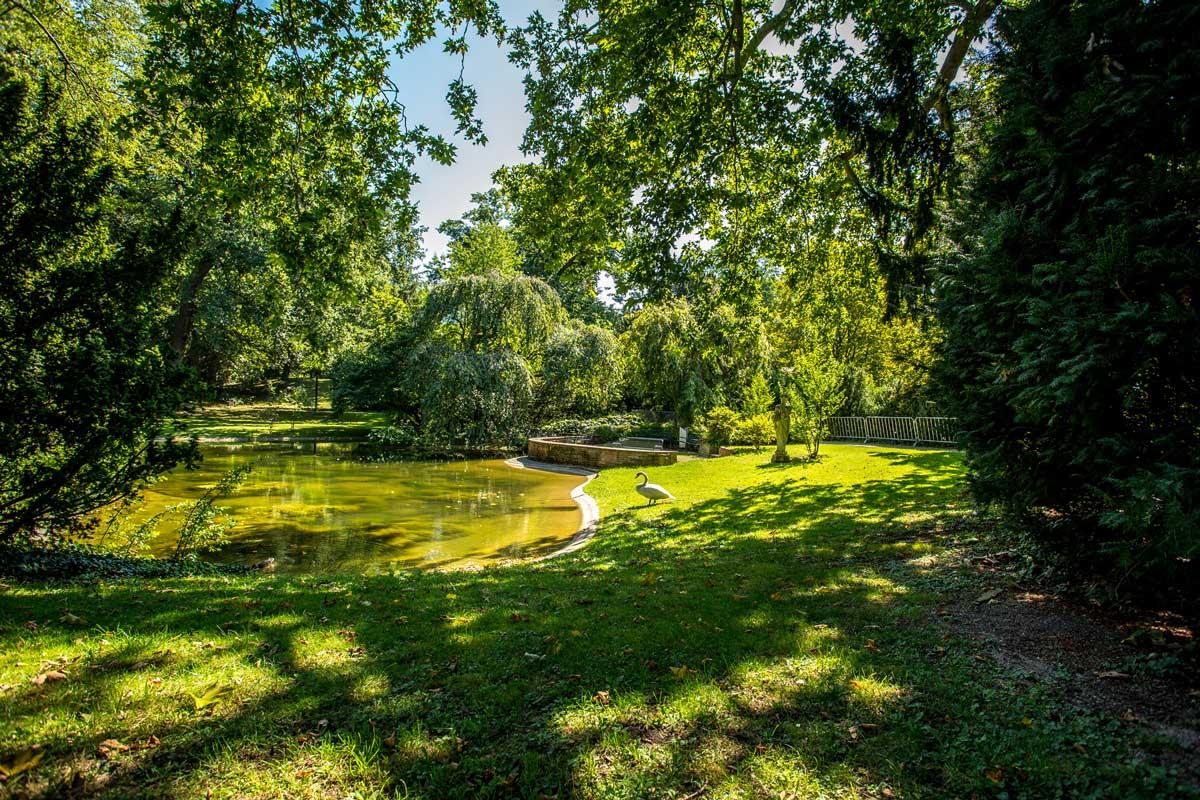 حديقة بالم