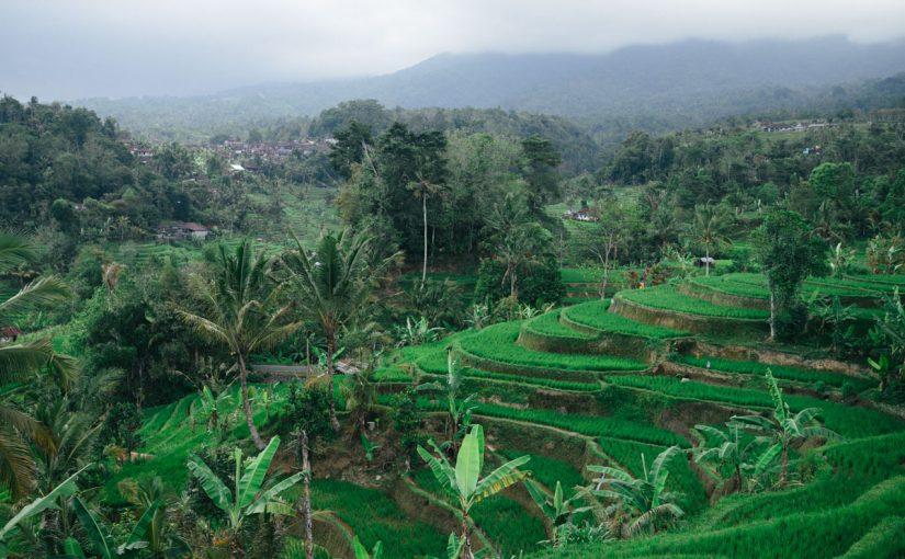 السياحة في إندونيسيا باندونق