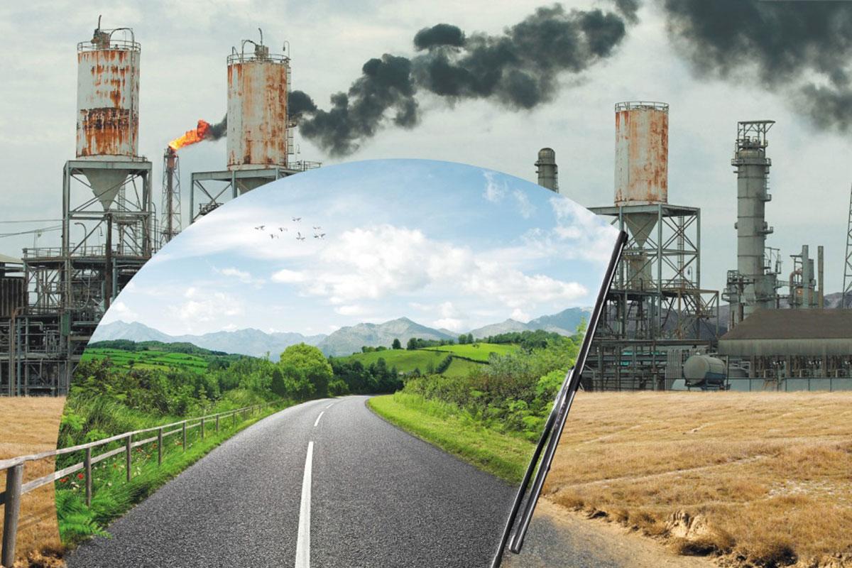 حل كتاب علم البيئة