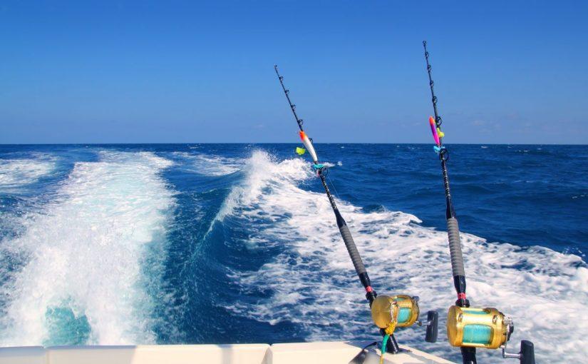 صيد السمك في الإمارات