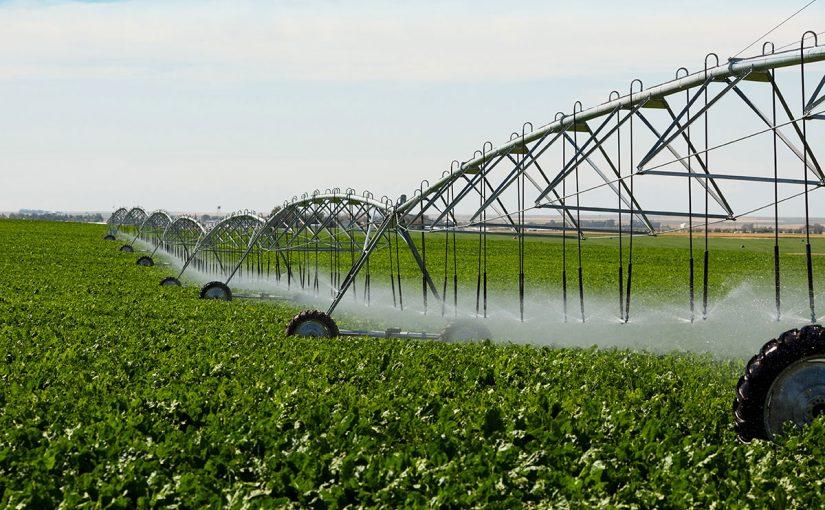 فوائد الزراعة