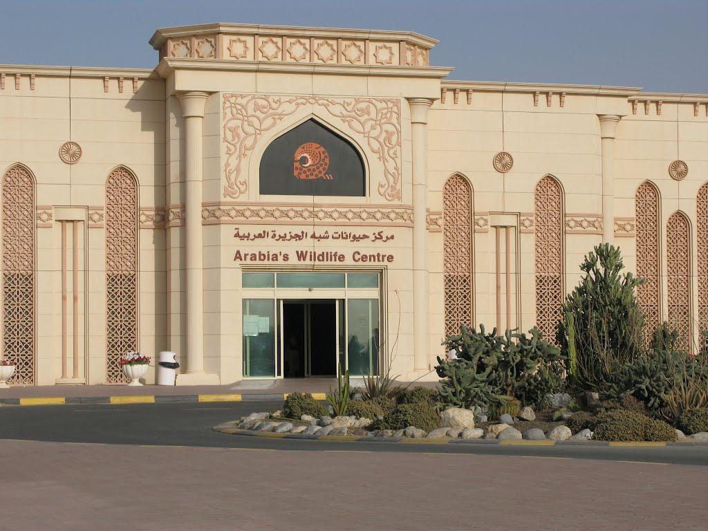 مركز حيوانات شبه الجزيرة العربية