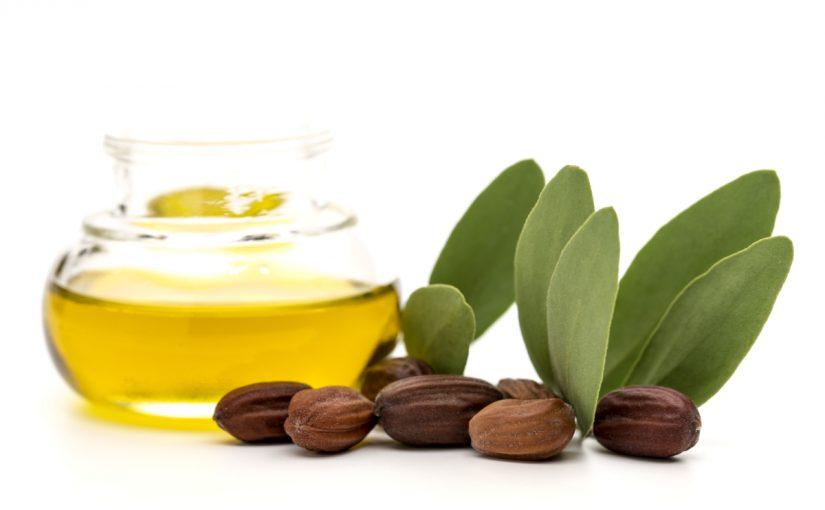 فوائد زيت الجوجوبا للبشرة وأفضل وصفاته موسوعة