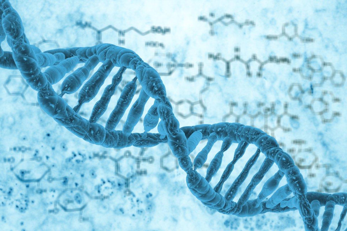 بحث عن المادة الوراثية dna كامل