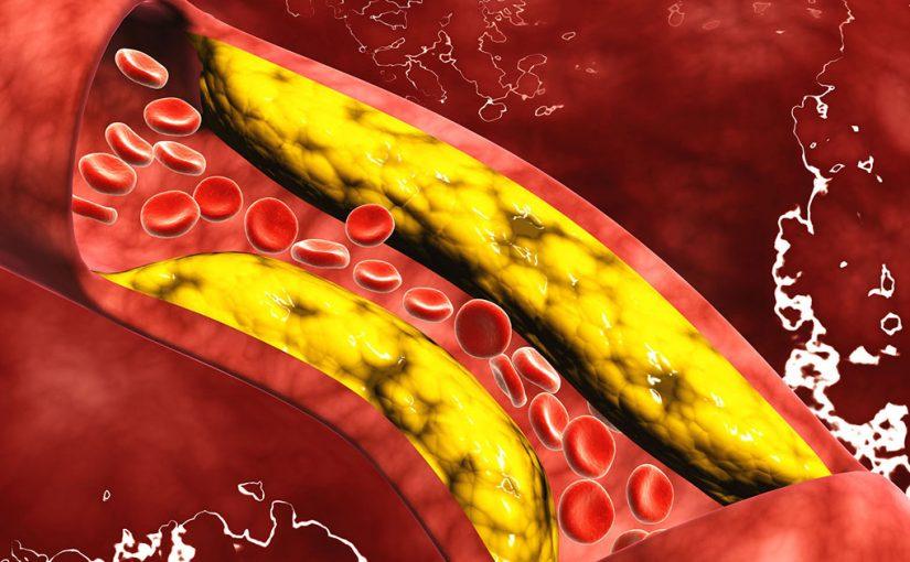 فوائد الكلسترول