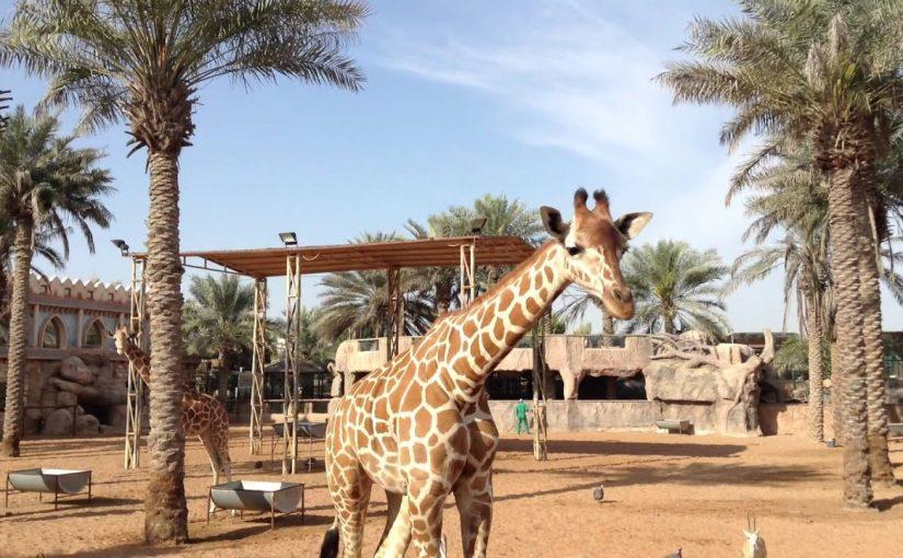 حديقة الإمارات للحيوانات أبوظبي