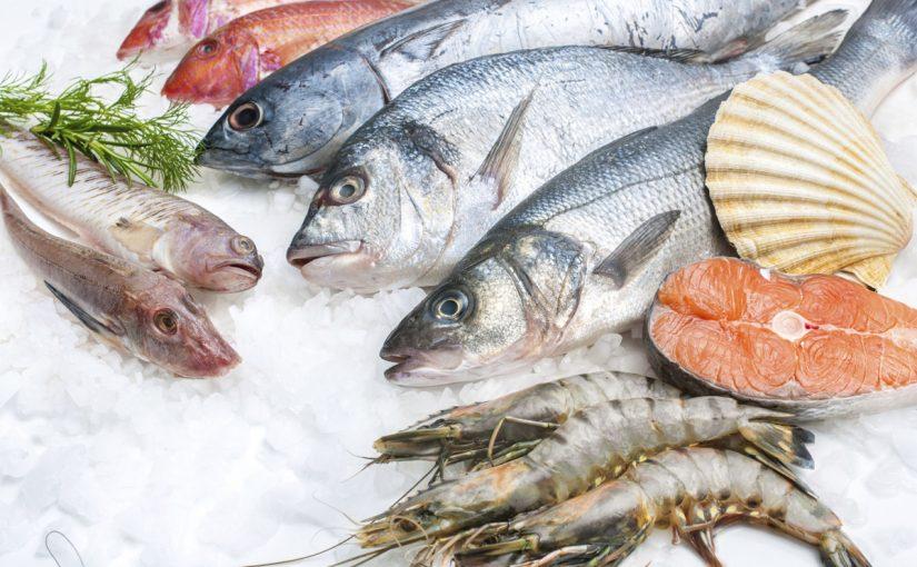 تفسير رؤية السمك في المنام للمتزوجة موسوعة