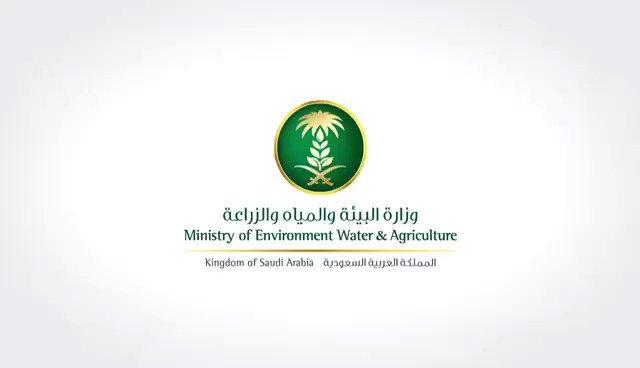 وزارة البيئة توضح كمية ومنسوب الأمطار ببعض مدن ومحافظات السعودية
