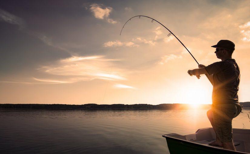 دليل الصيد في دبي