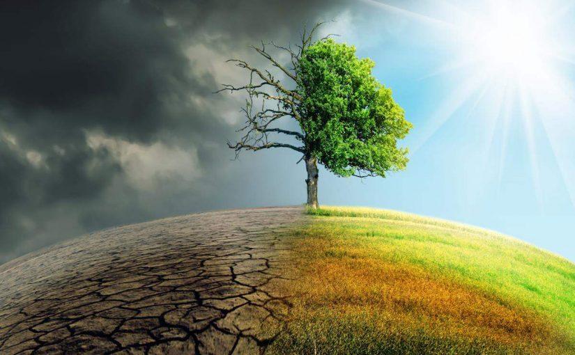 اذاعة عن البيئة موسوعة