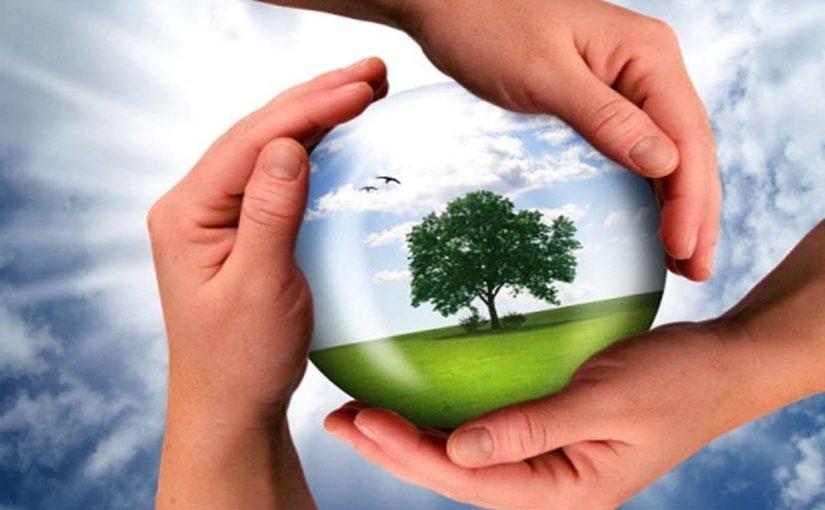 اذاعة مدرسية عن البيئة موسوعة
