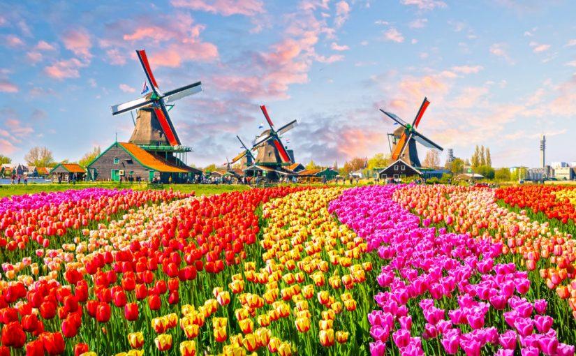 بماذا تشتهر هولندا