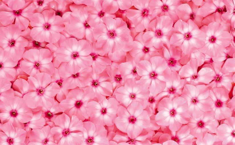 تفسير اللون الوردي في المنام