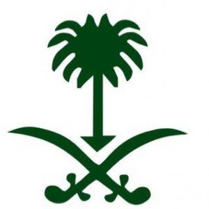 صور شعار السيفين والنخلة