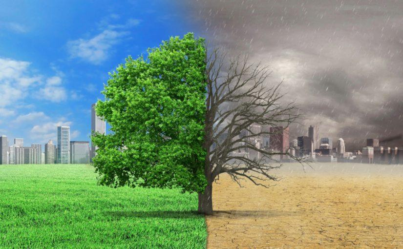موضوع عن البيئة