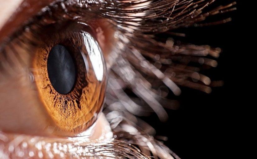 مكونات العين
