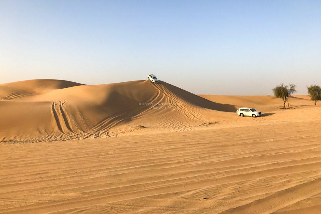 صور صحراء الإمارات 2020