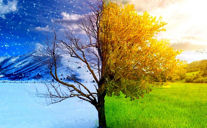 ما الفرق بين الطقس والمناخ