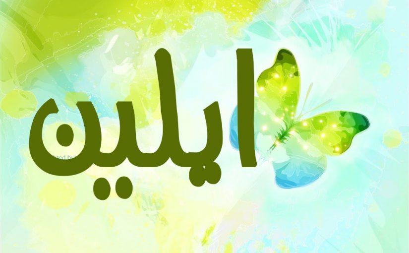 معنى اسم الين في المعجم العربي
