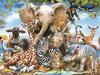 بحث المخلوقات الحية وعلاقاتها المتبادلة