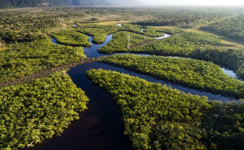 مقالة أين يوجد نهر الأمازون