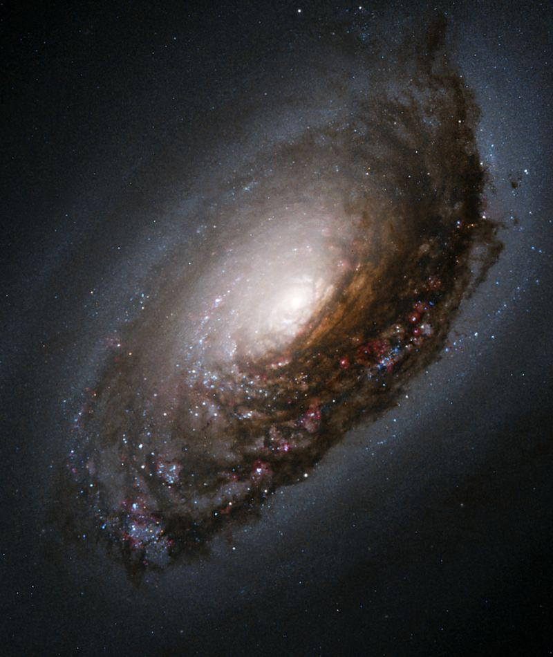 مجرة العين السوداء