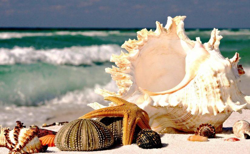 صور بحر و شواطئ ساحرة بجودة 9