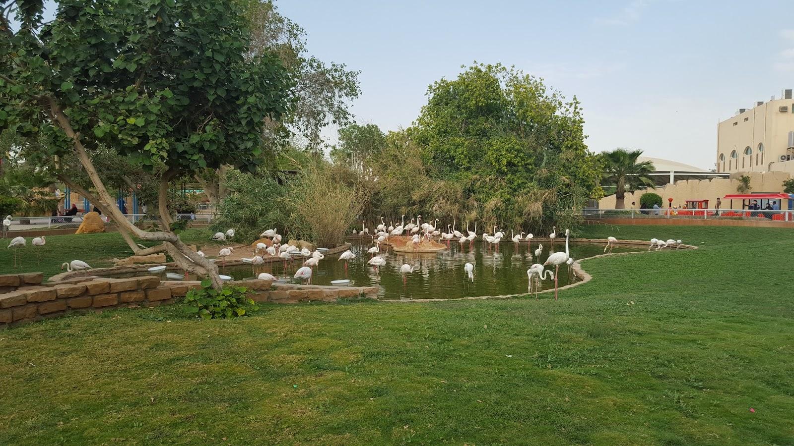 حديقة الحيوان بالرياض
