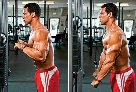 تمارين إحماء عضلة التراي