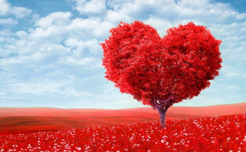 ما هو الحب فى الله