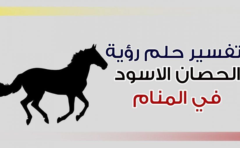 تفسير الحصان الاسود في المنام للعزباء موسوعة