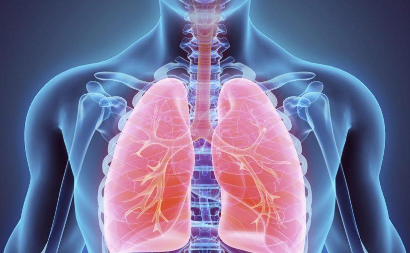 مقال علمي عن الجهاز التنفسي يتكون من مقدمه وعرض وخاتمه قصير