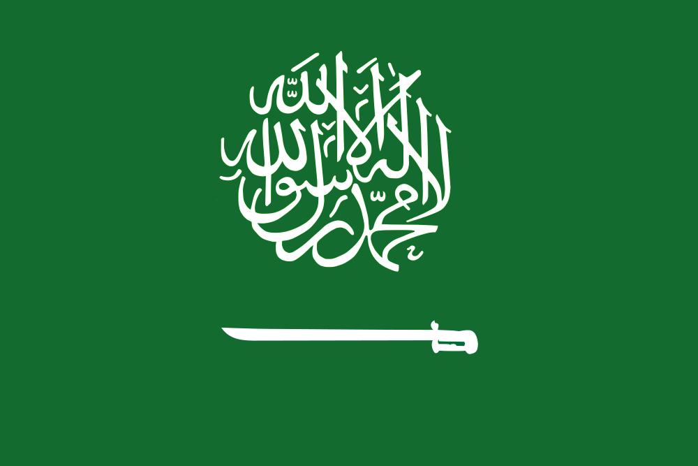 صور علم المملكة العربية السعوديه