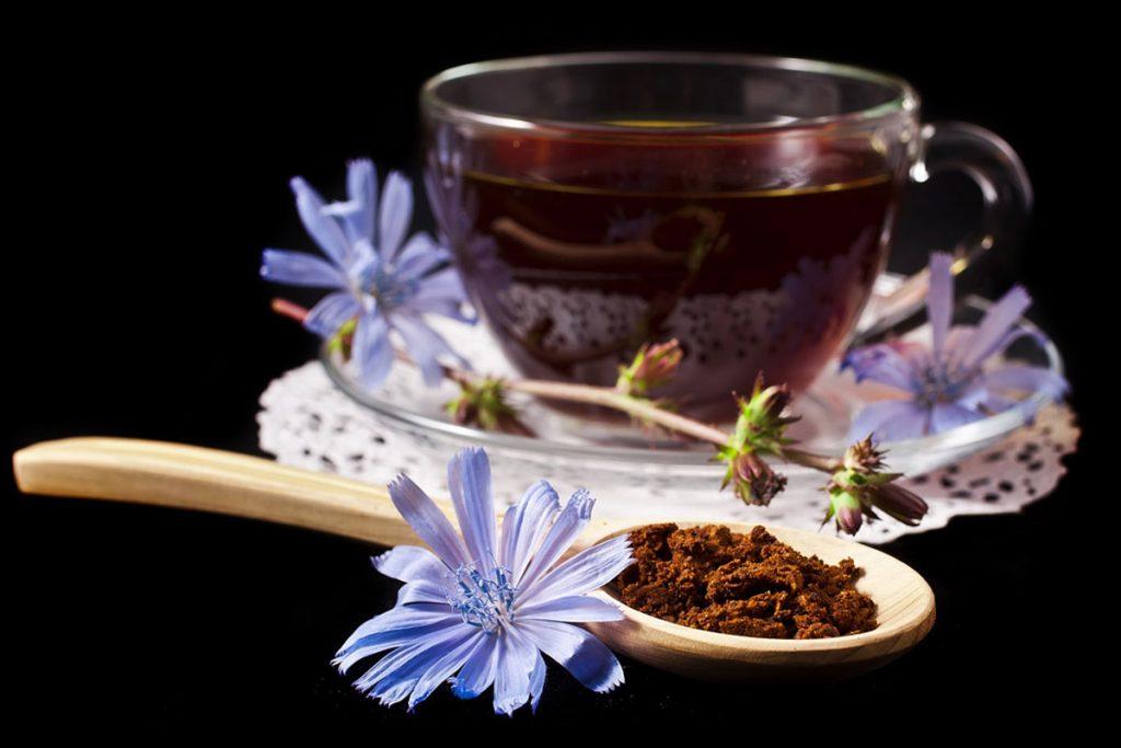 قهوة الهندباء