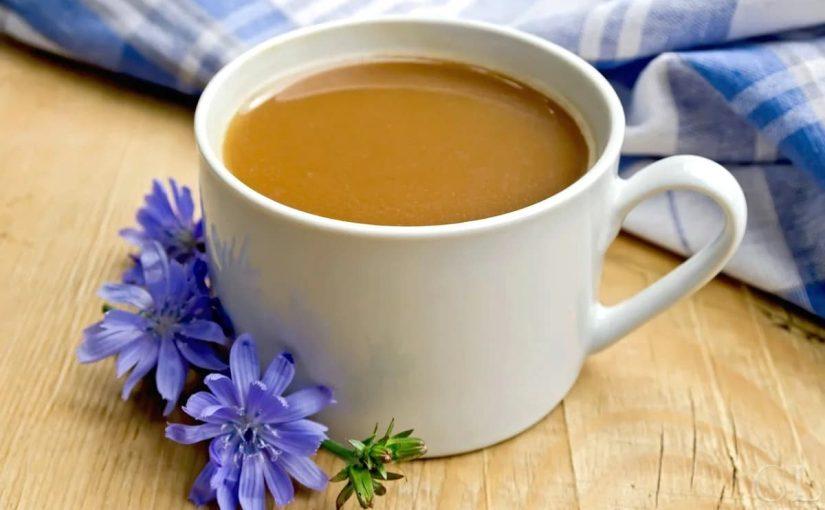 قهوة الشيكوريا