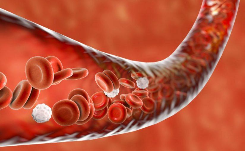 بحث عن فقر الدم مع المراجع