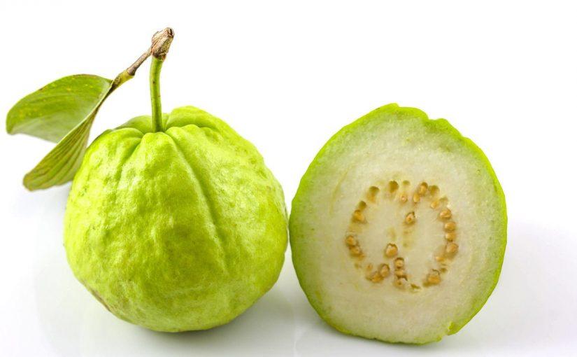 ما هي فوائد الجوافة للاطفال وطريقة تحضيرها والوقت المناسب لأكلها موسوعة