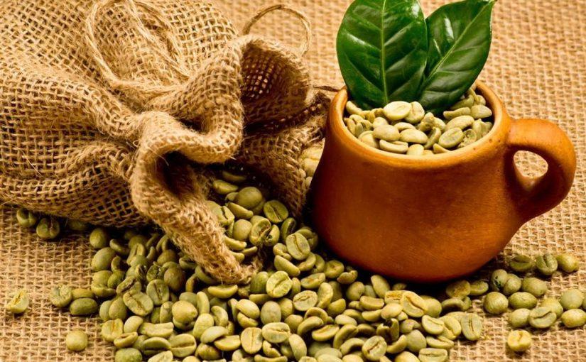 حبوب القهوة الخضراء للتنحيف