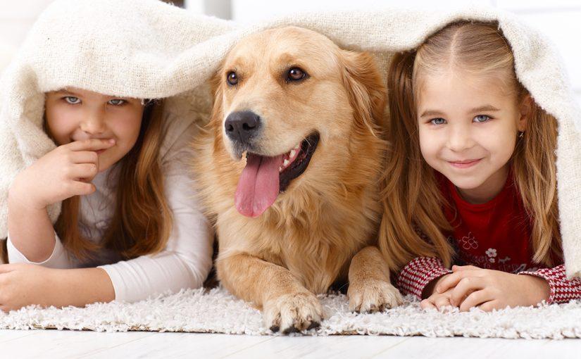 أسئلة سهلة للأطفال عن الحيوانات واجوبتها