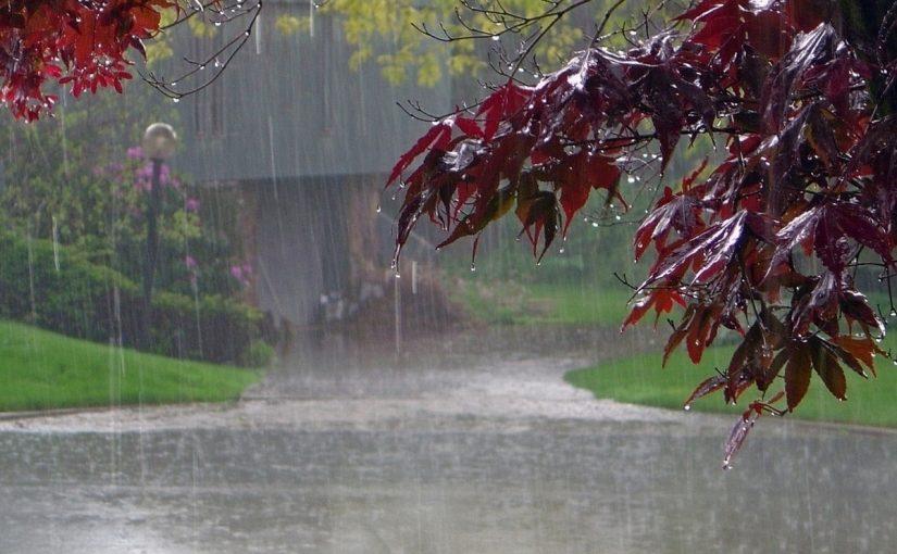 تفسير نزول المطر في المنام لابن سيرين والنابلسي وابن شاهين في الخير والشر -  موسوعة