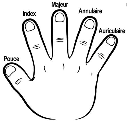 أسماء أصابع اليد بالفرنسية للأطفال
