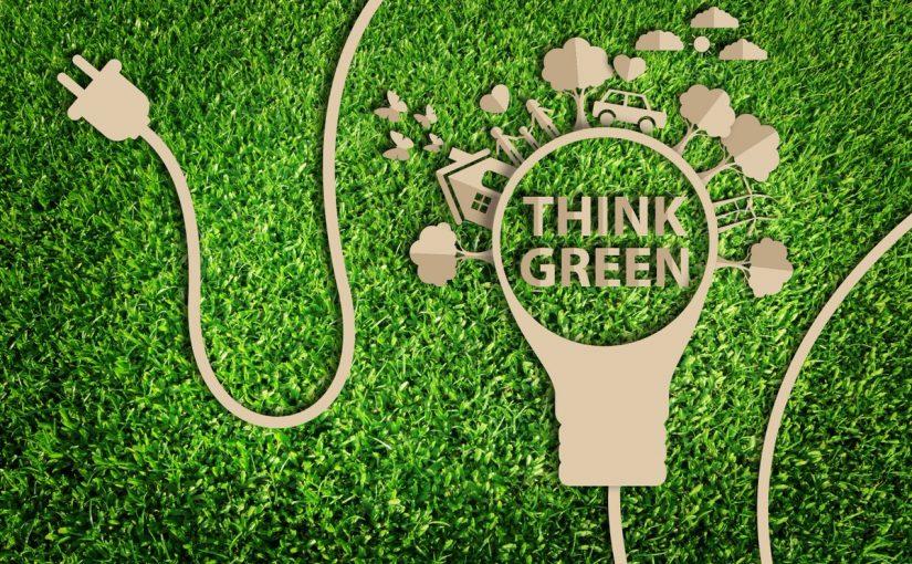 أمثلة على التسويق الأخضر