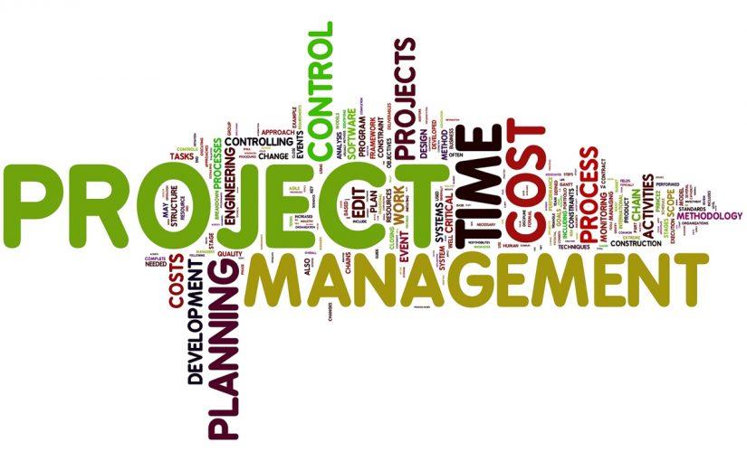 إدارة المشروعات الصغيرة