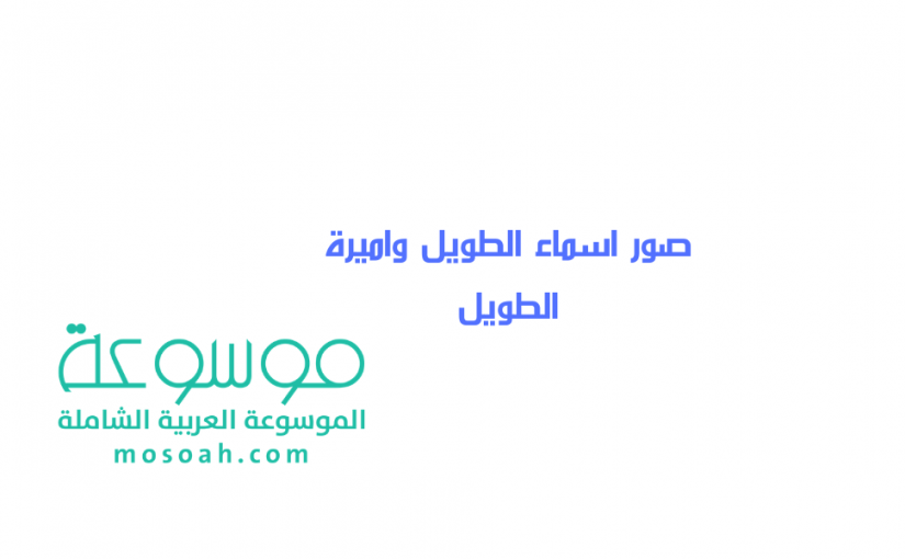 لوجو المؤسسة العامة للتعليم الفني والتدريب المهني الجديد Png