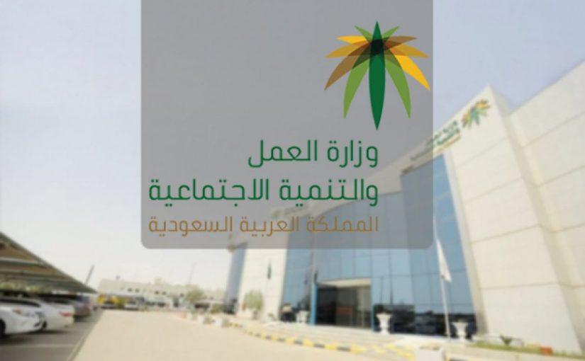 وزارة الموارد البشرية والتنمية الاجتماعية تحديث الضمان
