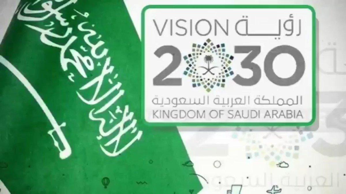 بنيت رؤية المملكة العربية السعودية 2030 على - موسوعة
